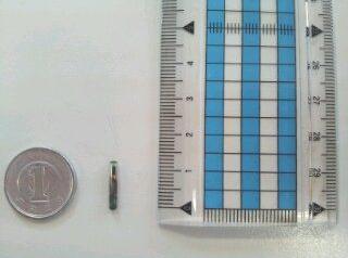 1円より小さいサイズのマイクロチップです。